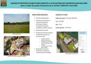 Projet d'extension de la société TUBAUTO à Sens (89)